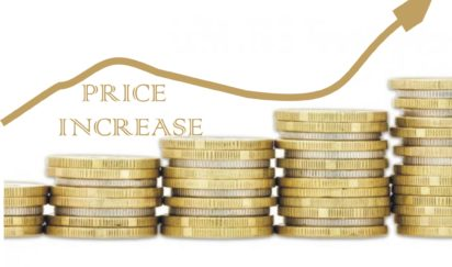 Price increase slows to 15.9% in November — NBS