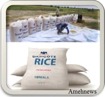 RICE PRODUCTION: DANGOTE INAUGURATES MULTI BILLION NAIRA RICE PROCESSING  PLANT IN JIGAWA