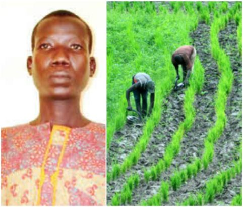 I killed farm thief after several warnings –Suspect