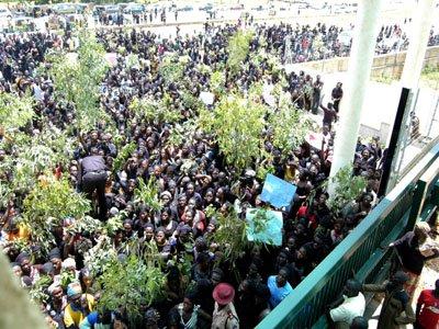 Plateau Killings: Protest turns violent in Govt House