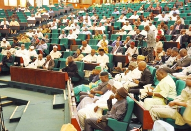 Reps seek reversal of Ibadan Electricity Company's directors' suspension