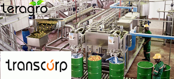 TransCorp ends its investment in fruit concentrate maker, Teragro