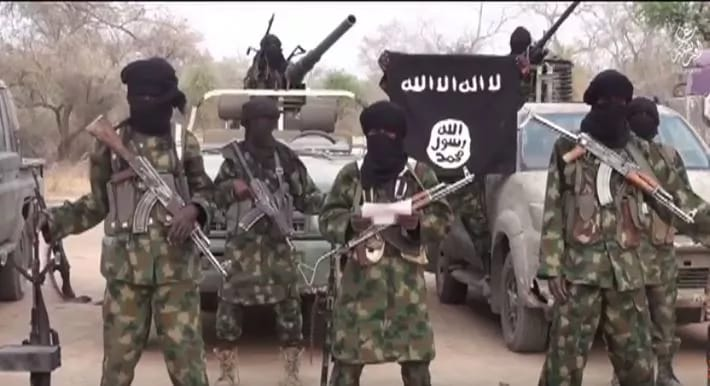 Boko Haram Kills 11, Abducts Nine Women in Borno