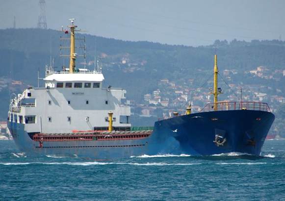 Vessel financing fund hits $300m, say ship owners