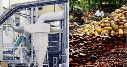 50,0000 tons of cocoa beans processing plant in Cross River set to go into operation
