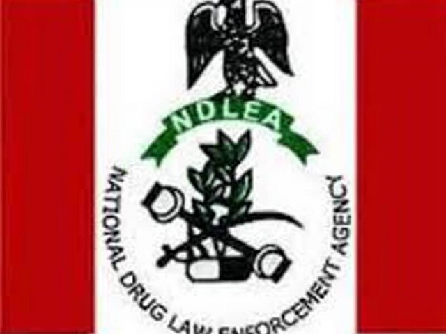 We are upto onslaught against drugs for killed 4 officers, NDLEA tells barons