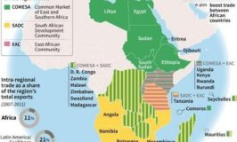 Africa regional integration in African Free Trade remains low-report