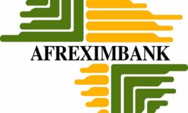 Afreximbank invests $1b in Nigeria's EPZ