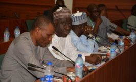 Senate, Reps Committees task Niger Delta Ministry on budget implementation