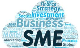 Industrialists, experts seek probe of SMEs' funds