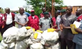 Western Marine command handover  Impounds Cannabis Worth N32m to NDLEA officials