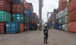 Much I Do About Joint Cargo Examination of Customs and SON at Ports