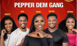 Intrigues, Excitement as BB Naija 'Pepper Dem' Goes Full Throttle