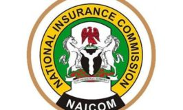 NAICOM Embrace Digital Transformation Of Processes, Procedure