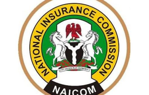NAICOM's industry portal goes live next year