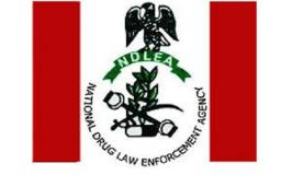 NDLEA warns pilgrims against banned drugs