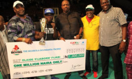 Emulate Adewunmi Ogunsanya's Support for Boxing- DG, Lagos Sports Commission