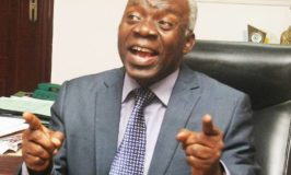 Buhari knows those causing unrest in Nigeria, says Falana