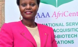 Karembu Apllauds Nigeria historical record of first country to approve biotech cowpea