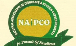 NAIPCO gathers experts to charts way to drive financial inclusion throughInsurance, Pension operations