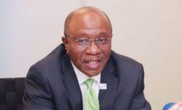 CBN sells N115bn T-bills to strengthen naira