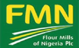 FMN plans a new Industrial Cassava Product to substitute Corn Starch importation in Nigeria