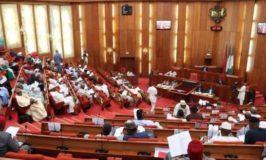 Senate urges economic diversification to boost forex