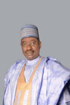BREAKING: Tribunal upholds Bomoi's election as Yobe South Senator