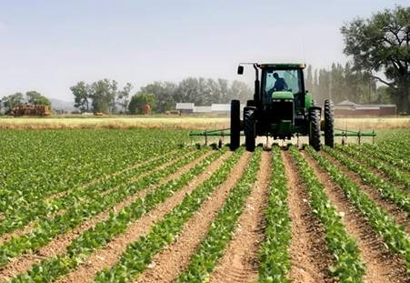 Nigeria records N323.4bn agric trade in three months