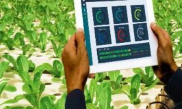Leadway highlights it levels of agri-tech platforms coverage