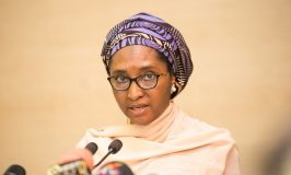FG Seeks Increased Private Sector's Investment in Healthcare