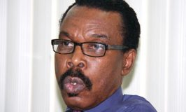 Nigeria Shouldn't Be Rushed into 'Eco' Currency, Says Rewane