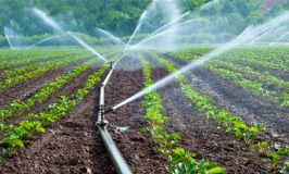 Govt urges farmers to take ownership of irrigation schemes