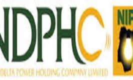 NDPHC to boost power supply by 300MW