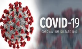 Lockdowns or home working to combat coronavirus: how does it impact employees' engagement?