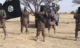 Panic, red alert in Abuja over Boko Haram camps