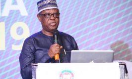 Nigeria's Livestock Industry Growing 12.7% Annually -Iyayi