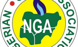 Nigerian Gas Association successfully hosted virtual business forum; unveils the role of Natural Gas in post-COVID economic recovery