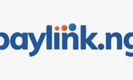 Paylink Sponsors Lagos SME Bootcamp, to Host 500 Small Businesses