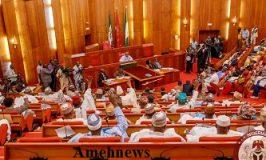 Senate Approve Danbatta' Second Tenure As NCC Boss