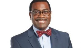 Buhari, Jonathan, Others Thrilled as Adesina Gets Second Term at AfDB