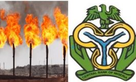 HOW TO BENEFITS FROM N250 BILLION CBN NATIONAL GAS EXPANSION FACILITY