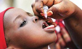 WHO Tasks Nigeria against Resurgence of Polio