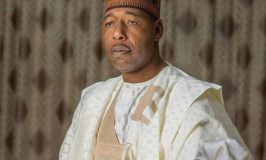 Terror Attack: Military Pledges to Support Zulum