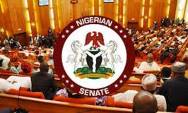 Senators Clash over 2021 Budget Proposals