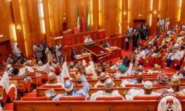 Senate Seeks Nigerian Leaders' Help to End Youth Protests
