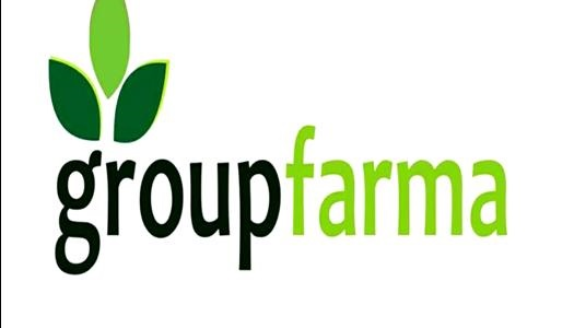 GroupFarma Adopts Backward Integrations To Boost Rice Production With 1000 Hectares of Land
