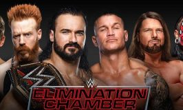 Don't Miss TheWWEElimination ChamberMatch On DStv and GOtv!