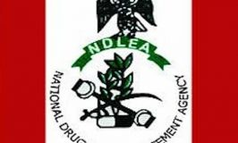 Again, NDLEA Nabs Suspected Fake Military Officers with 234kg Illicit Drugs