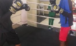 GOtv Boxing Night 22: RealOne, BabyFace Storm Mojisola Ogunsanya Gym Ahead World Boxing Federation Event